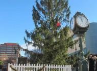 Árvore de Natal na Pensilvânia é apelidada de a mais feia dos EUA